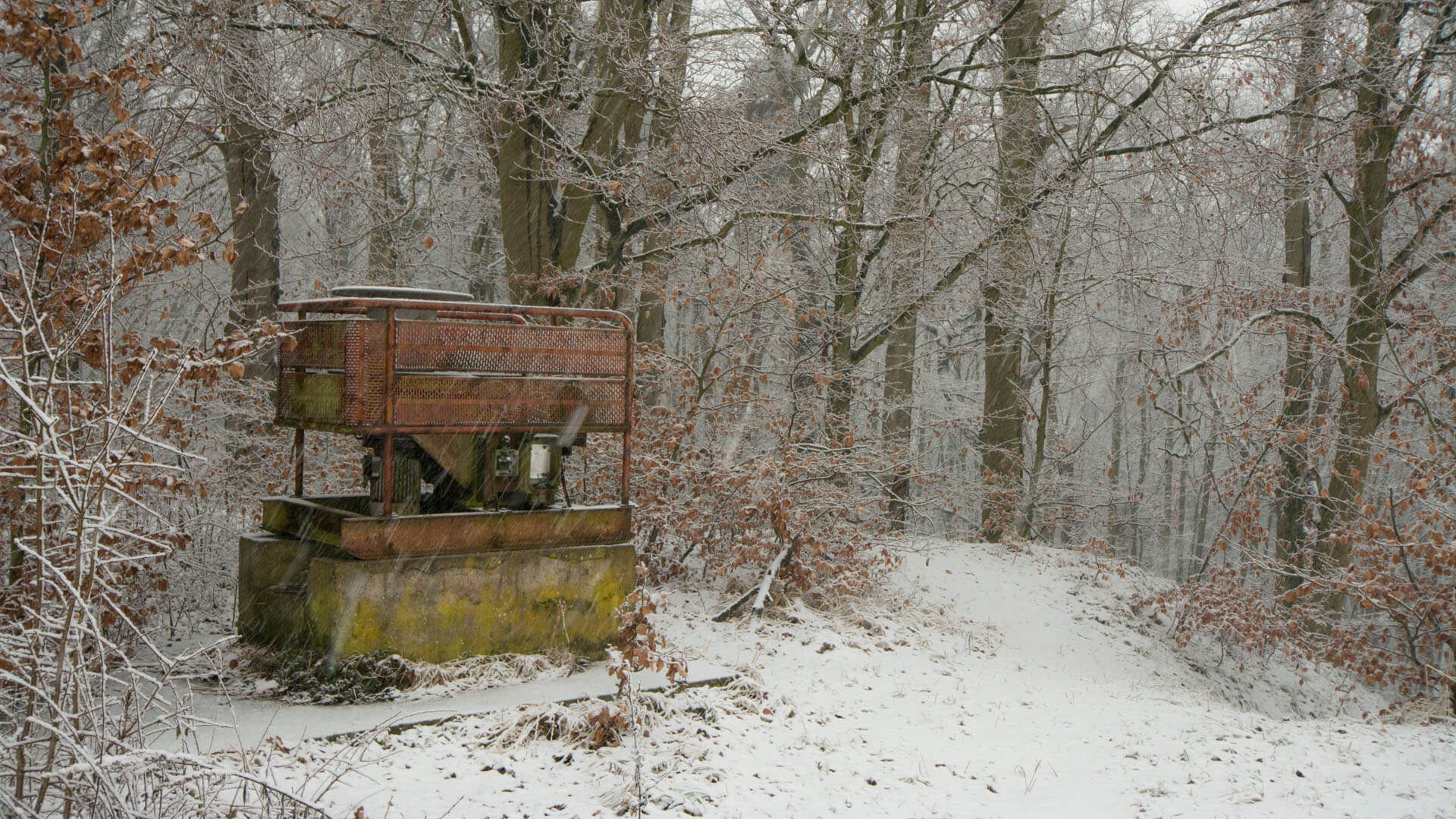 Skilift auf der Freundschaftshöhe im Naturschutzgebiet Kösterbeck.