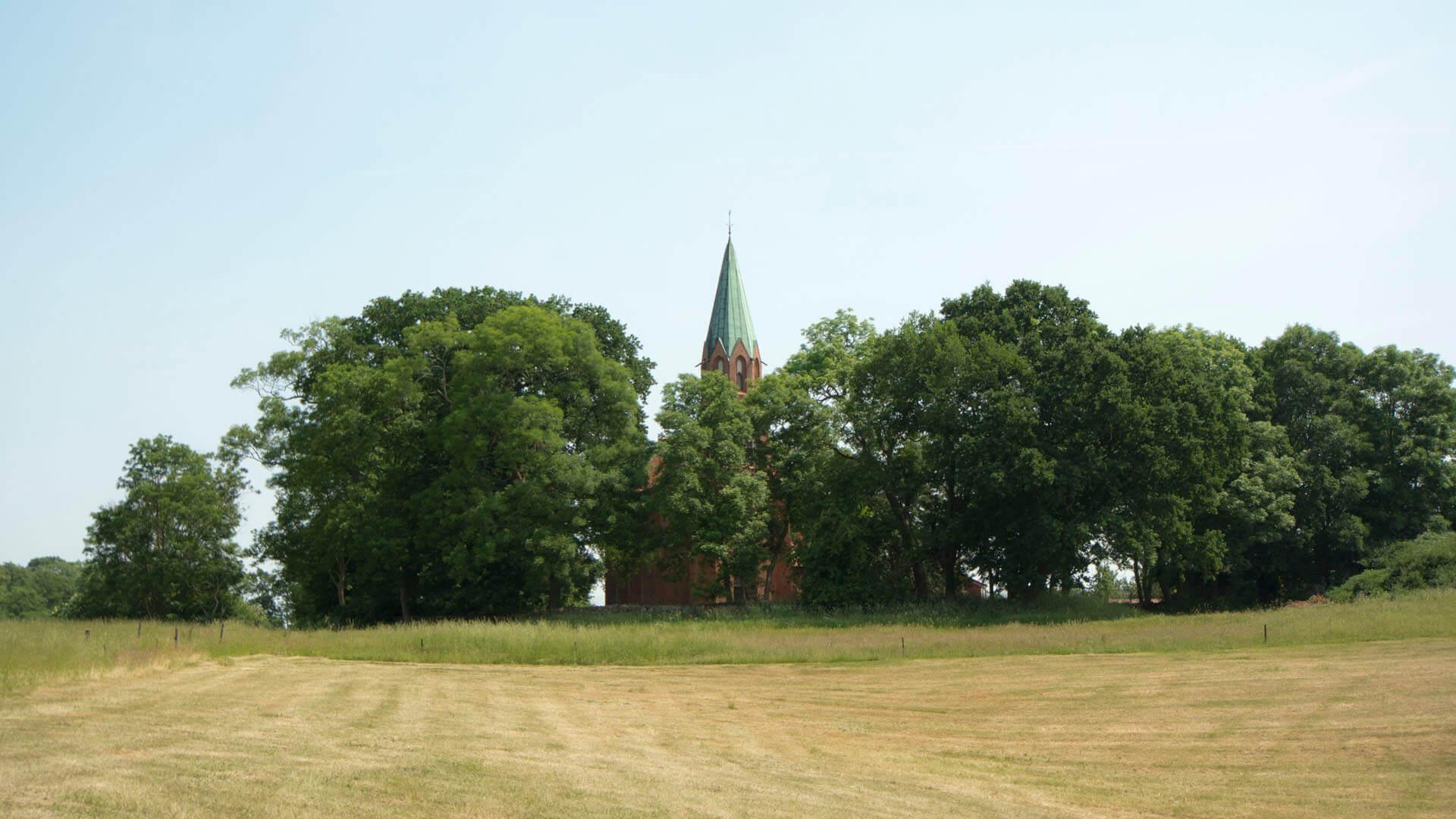 Der Kirchturm ragt über die Baumkronen
